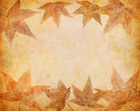 Vintage Grunge Leaves Stock Photos