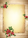 Vintage Grunge Paper With Cranberries Stock Photography