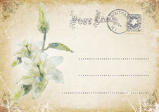 vintage grunge postcard with flower. illustration Stock Photos