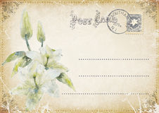Vintage grunge postcard with flowers. illustration Royalty Free Stock Photography