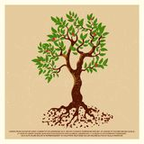 Vintage grunge poster with blossom fruit tree. Isolated on background. Vector illustration stock illustration