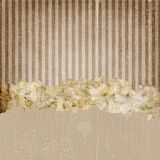 Vintage Grunge Stripes Background Brown Royalty Free Stock Image