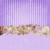 Vintage Grunge Stripes Background Purple royalty free stock photos