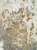 Vintage or grungy white background of natural cement or stone old texture as a retro pattern layout. It is a concept, conceptual o Royalty Free Stock Image