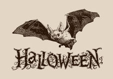 Vintage halloween bat horizontal poster, banner, header, mail, i. Vintage halloween celebration graphics flying bat horizontal for poster, banner, header, mail Royalty Free Stock Image