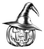 Vintage halloween witch pumpkin Stock Images