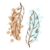 Vintage hand drawn feather Stock Images