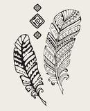 Vintage hand-drawn feathers Royalty Free Stock Image