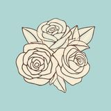 Vintage hand drawn roses patch vector design. Vintage hand drawn roses patch design of set. Vector flat illustration Royalty Free Stock Image