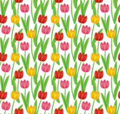 Vintage hand-drawn tulips' pattern stock photo