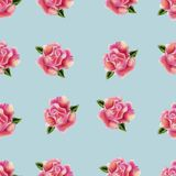 Vintage hand drawn watercolor rose flower seamless pattern royalty free stock image