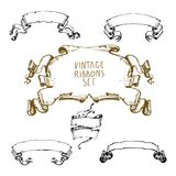 Vintage hand drawn waving ribbons collection. Hand drawn vintage waving ribbons collection.Cool old stroked style. Vector drawing Stock Image