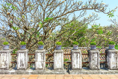 Vintage handrail and pedestals on patio Royalty Free Stock Photo
