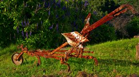 Vintage Harrow. An old ox drawn harrow on display in the gardens of the Bathurst Agricultural Museum in the Eastern Cape, South Africa Stock Image