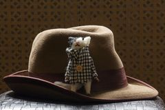 Vintage hat cat wooden background. Day light stock photography