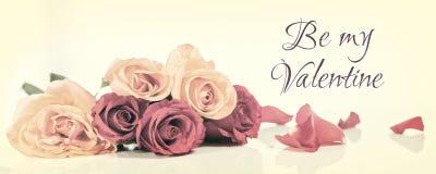 Vintage header valentine`s day Stock Photography