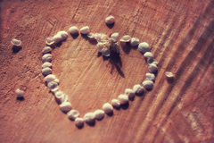 Vintage heart contour maid of cherry petals on cracked wooden background with shallow depth. Vintage heart contour maid of cherry petals on cracked wooden Stock Photography