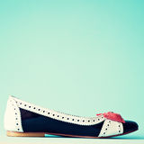 Vintage heel shoe Royalty Free Stock Images