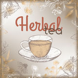 Vintage herbal tea label with medicinal herbs and cup Stock Images