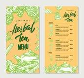 Vintage Herbal Tea Restaurant Menu Template. With hand drawn natural healthy organic ingredients vector illustration Stock Image