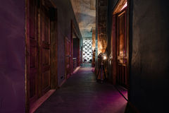 Vintage high doors in the mansion converted into a nightclub. loft style Stock Photography