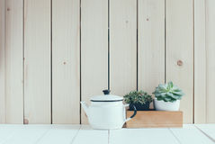 Vintage home arrangement. Summer plants and enamelware on a barn wall background, soft pastel colors Royalty Free Stock Images