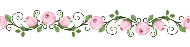 Vintage horizontal seamless vignettes with pink ro. Horizontal seamless vintage calligraphic vignette with pink rose buds on a white background. Vector Stock Photo