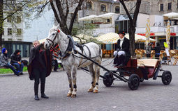 Vintage horse carriage for tourists in Old Riga city street Royalty Free Stock Photography