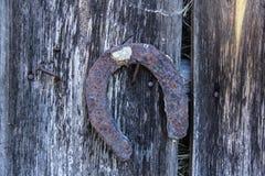 Vintage horseshoe royalty free stock images