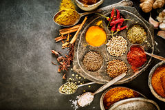 Vintage hot pungent spices for Asian cuisine. Vintage display of hot pungent spices for Asian cuisine together with salt, star anise, root ginger and garlic Stock Images