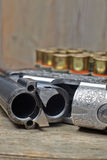 Vintage hunting gun with shells Royalty Free Stock Image