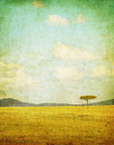 Vintage illustration of african landscape Royalty Free Stock Images