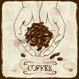 Vintage illustration with coffee beans Stock Photos