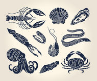 Vintage illustration of crustaceans, seashells and cephalopods  with names. Vintage illustration of crustaceans, seashells and cephalopods over white background Stock Image