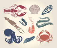 Vintage illustration of crustaceans, seashells and cephalopods Royalty Free Stock Photography