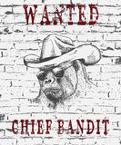 Vintage illustration of the gorilla-bandit. Who wanted .Grunge effect.Typography design for t-shirts Stock Images