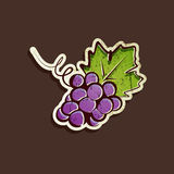 Vintage illustration with grapes Stock Images