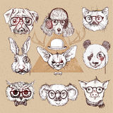 Vintage illustration of hipster animal set with glasses in vector. Stock Photo