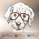 Vintage illustration of hipster puppy with glasses Royalty Free Stock Photo