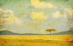 Vintage Illustration Of African Landscape Royalty Free Stock Photos