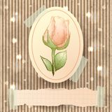 Vintage illustration with rose Stock Photo