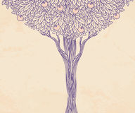 Vintage illustration of a tree Royalty Free Stock Photos