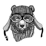 Vintage Image of BEAR for t-shirt design for motorcycle, bike, motorbike, scooter club, aero club. Hand drawn picture Royalty Free Stock Photography