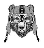 Vintage Image of BEAR for t-shirt design for motorcycle, bike, motorbike, scooter club, aero club. Hand drawn picture Royalty Free Stock Image