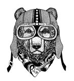 Vintage Image of BEAR for t-shirt design for motorcycle, bike, motorbike, scooter club, aero club. Hand drawn picture Stock Images