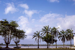 Vintage image of Paramaribo, Suriname. A vintage mid-1960's image the coast line and palm trees in beautiful Paramaribo, Suriname. (Image taken from a color Royalty Free Stock Photos