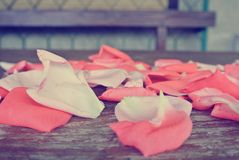 Vintage image of pink rose petals on rustic wooden table Royalty Free Stock Photography