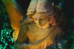 Vintage image of a sad angel on a cemetery against the backgrou Stock Image