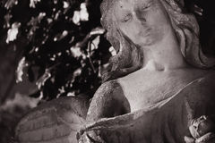 Vintage image of a sad angel on a cemetery against the backgroun Stock Photography