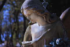 Vintage image of a sad angel on a cemetery against the backgroun Royalty Free Stock Photos